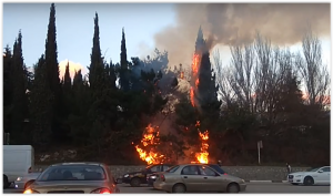 В Ялте напротив Бакалеи произошёл пожар