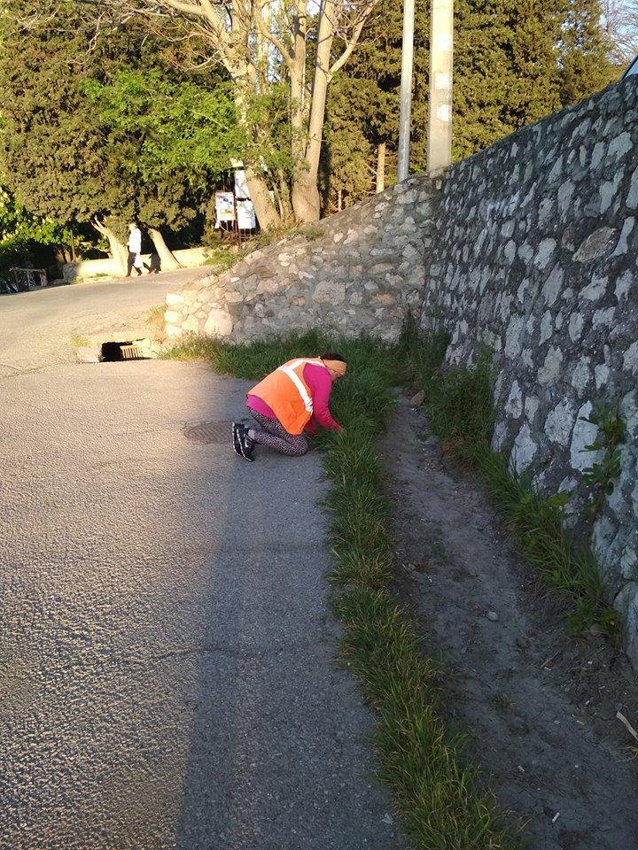 В Алупке дворники вынуждены работать без необходимого инвентаря