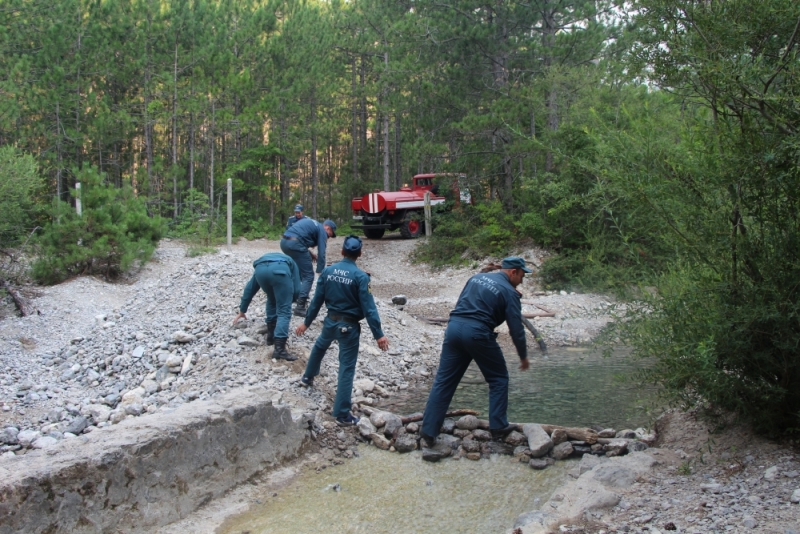 В Ялте третий день тушат лесной пожар (Фото: пресс-служба МЧС) 6