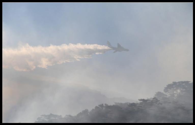 В Ялте третий день тушат лесной пожар (Фото: пресс-служба МЧС) 2