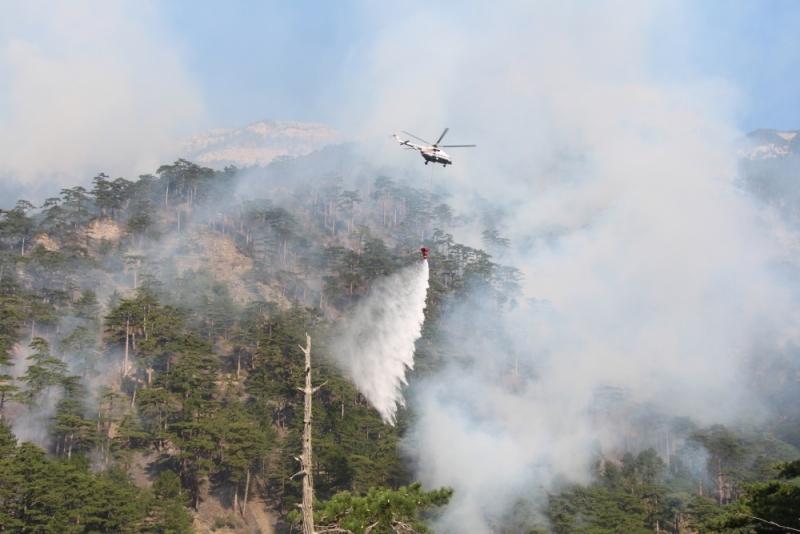 В Ялте третий день тушат лесной пожар (Фото: пресс-служба МЧС) 3