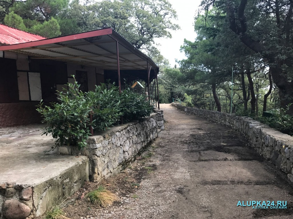 Городской парк в Алупке: плюсы и минусы 13