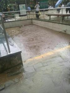 Дождливые катаклизмы в Ялте: подземные переходы полностью заполнились водой