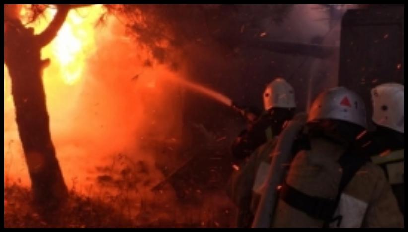 В Ялте горел корпус санатория «Сосняк»