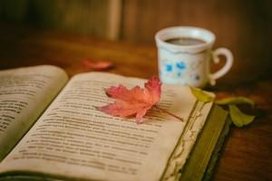 Правила эффективного чтения для всех