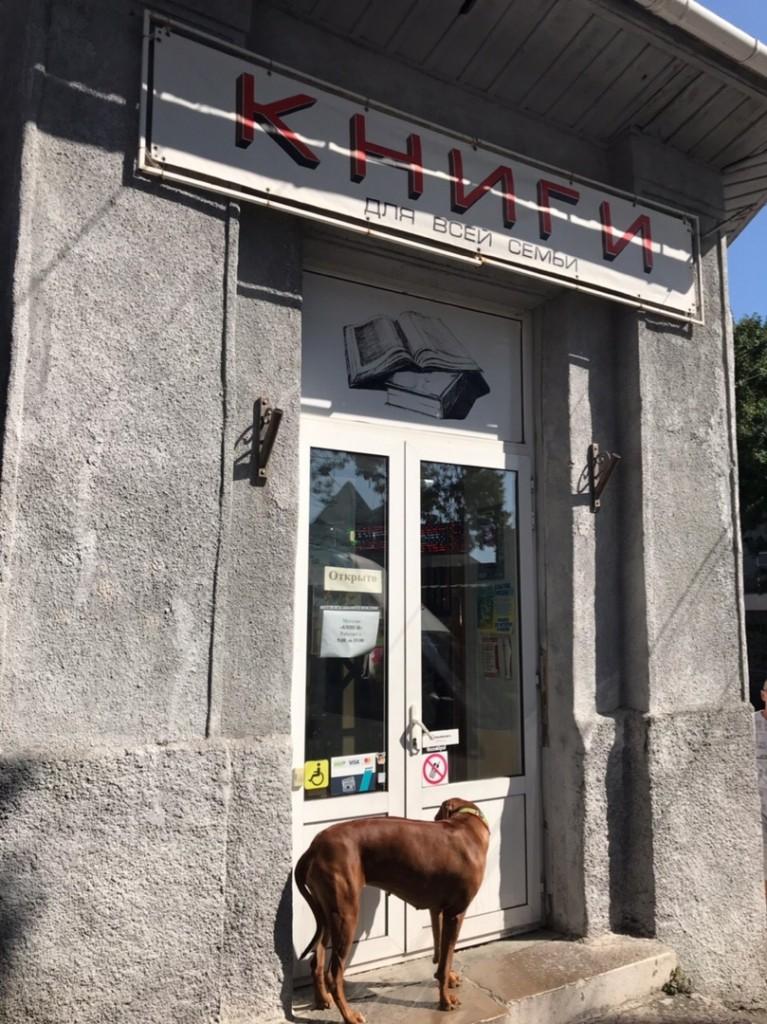 Книжный магазин в Алупке